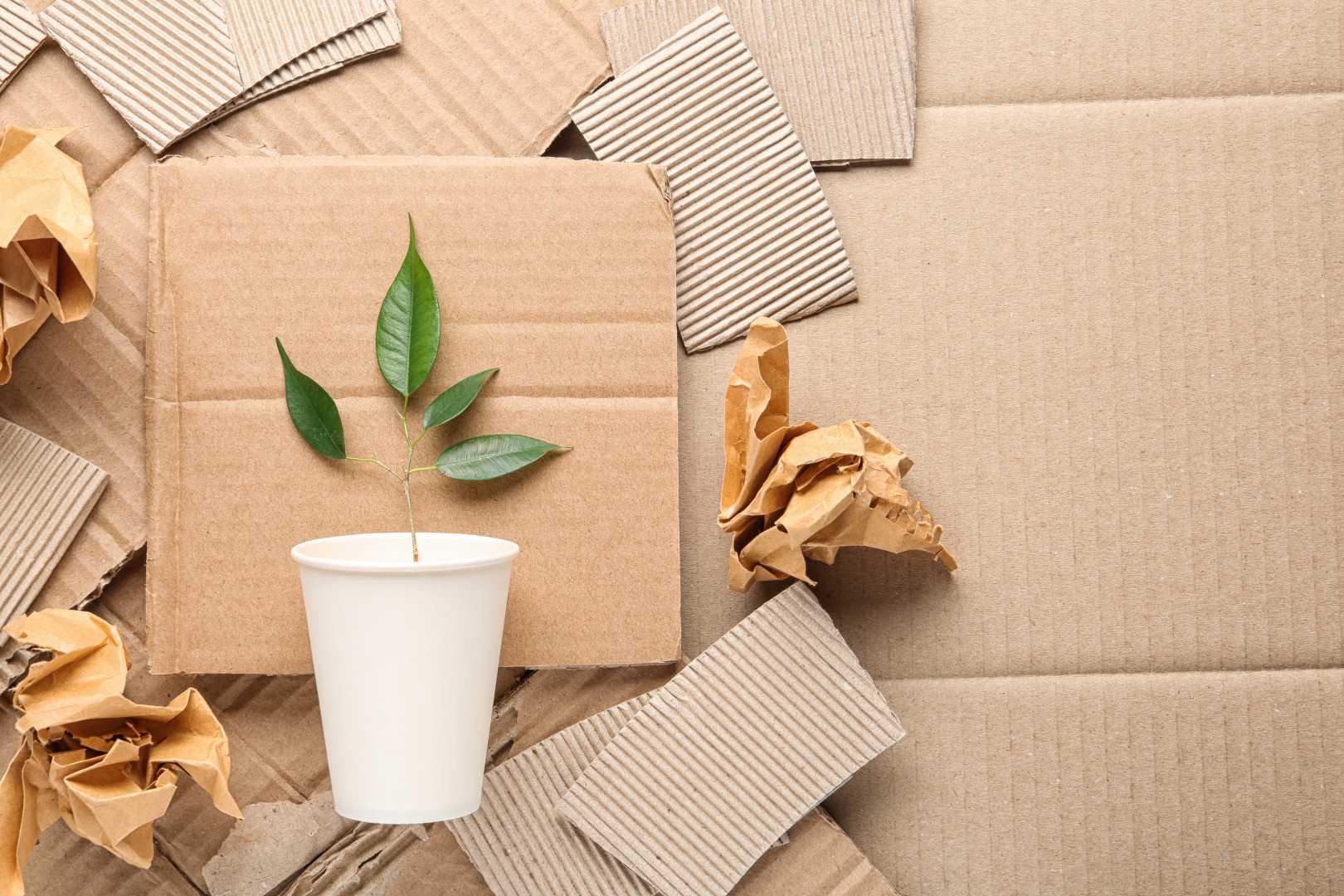Recyclage karton