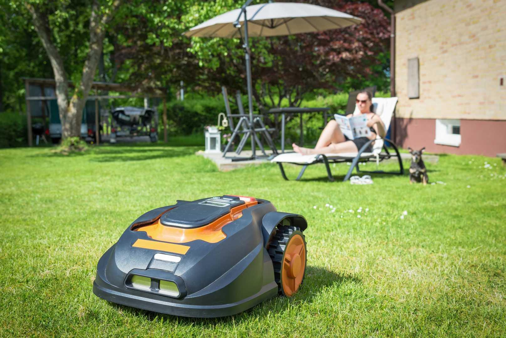 Robotmaaier gras