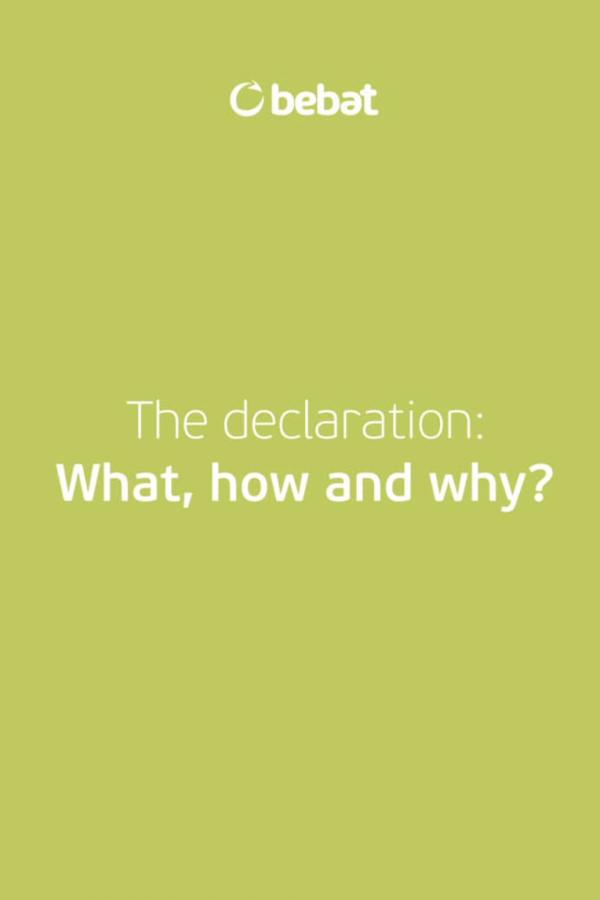 Declaration video English